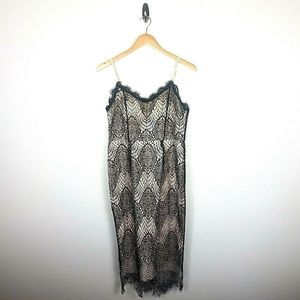 Misguided Black Lace Nude Dress sz 12 Bodycon NEW